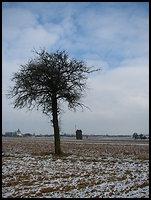 /images/stories/200902_ZimaNaPodlasiu/wiatrak/640_img_3629_dobre.jpg