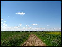 images/stories/20110802_ZbiegiemNogatu/800_IMG_2940_ZulawskiePola.JPG