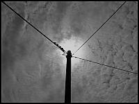 images/stories/20110821_Kartuzy/800_IMG_3048_Epicentrum_v1.JPG