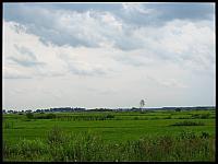images/stories/20120711_Biebrza/640_IMG_7010_Przestrzen_v1.JPG