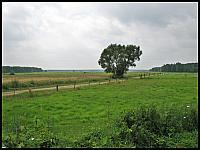 images/stories/20120714_Biebrza/640_IMG_7265_NadBiebrza_v1.JPG