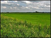 images/stories/20120714_Biebrza/640_IMG_7376_NadNarwia_v1.JPG
