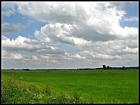 images/stories/20120714_Biebrza/640_IMG_7377_NadNarwia_v1.JPG