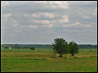 images/stories/20120714_Biebrza/640_IMG_7384_NadNarwia_v1.JPG