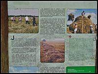 images/stories/20120715_Biebrza/640_IMG_7455_BatalionowaLaka_v1.JPG