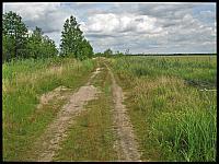 images/stories/20120715_Biebrza/640_IMG_7474_Droga_v1.JPG