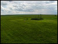 images/stories/20120715_Biebrza/640_IMG_7534_Lawki_v1.JPG