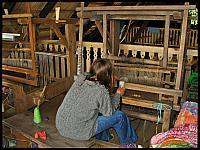 images/stories/20120716_Biebrza/640_IMG_7661_PrzyKrosnach_v1.JPG