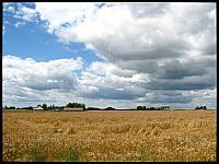 images/stories/20120716_Biebrza/640_IMG_7712_Podlasie_v1.JPG