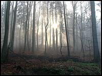 images/stories/2014/20141109_LewinoKurhany/640_IMG_5144_ZamglonyWschodSlonca1_v1.JPG