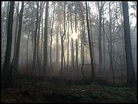 images/stories/2014/20141109_LewinoKurhany/640_IMG_5145_ZamglonyWschodSlonca2_v1.JPG